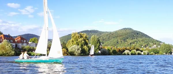 Segeln lernen auf dem Neckar